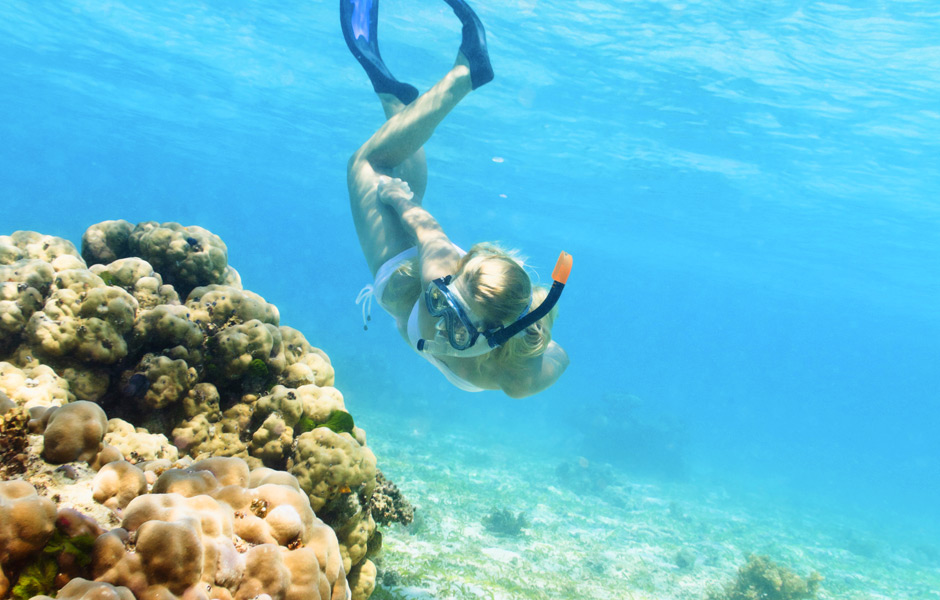5 Reasons To Go Snorkeling In Key West, Florida